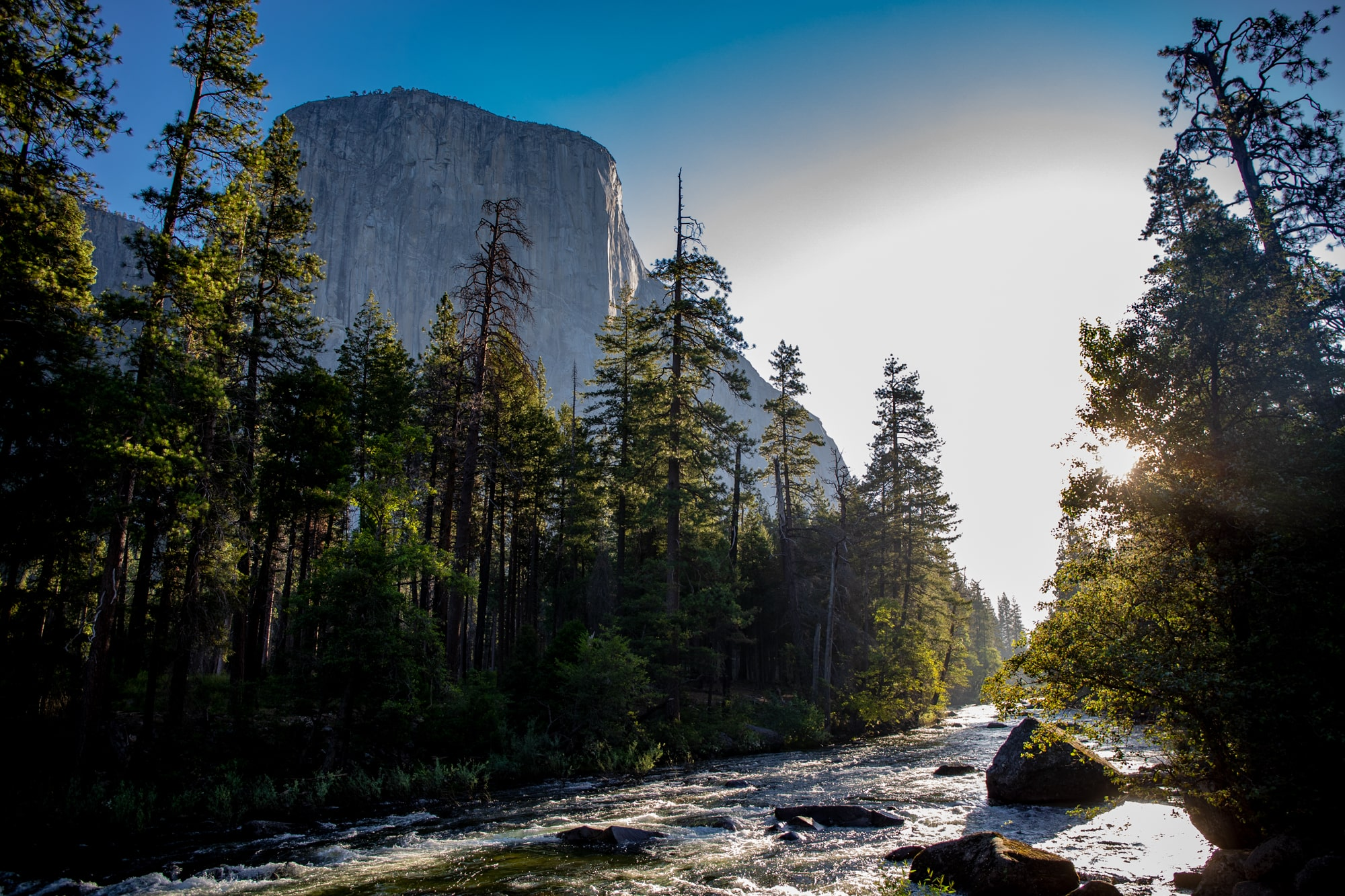 A RIVER RUSHES THROUGH THE YOSEMITE VALLEY